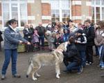 éduquer chien publique